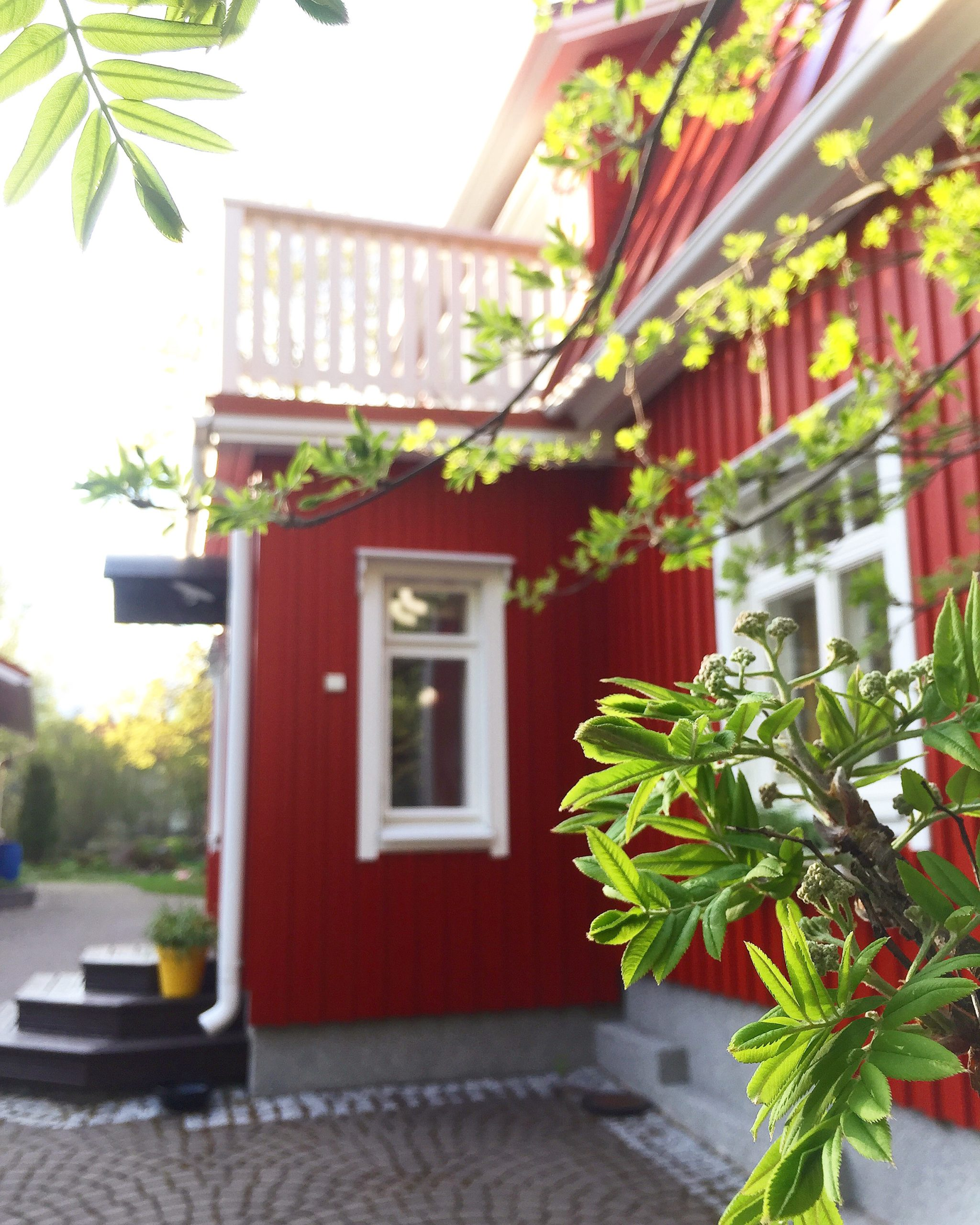 Elluyellow punainen talo