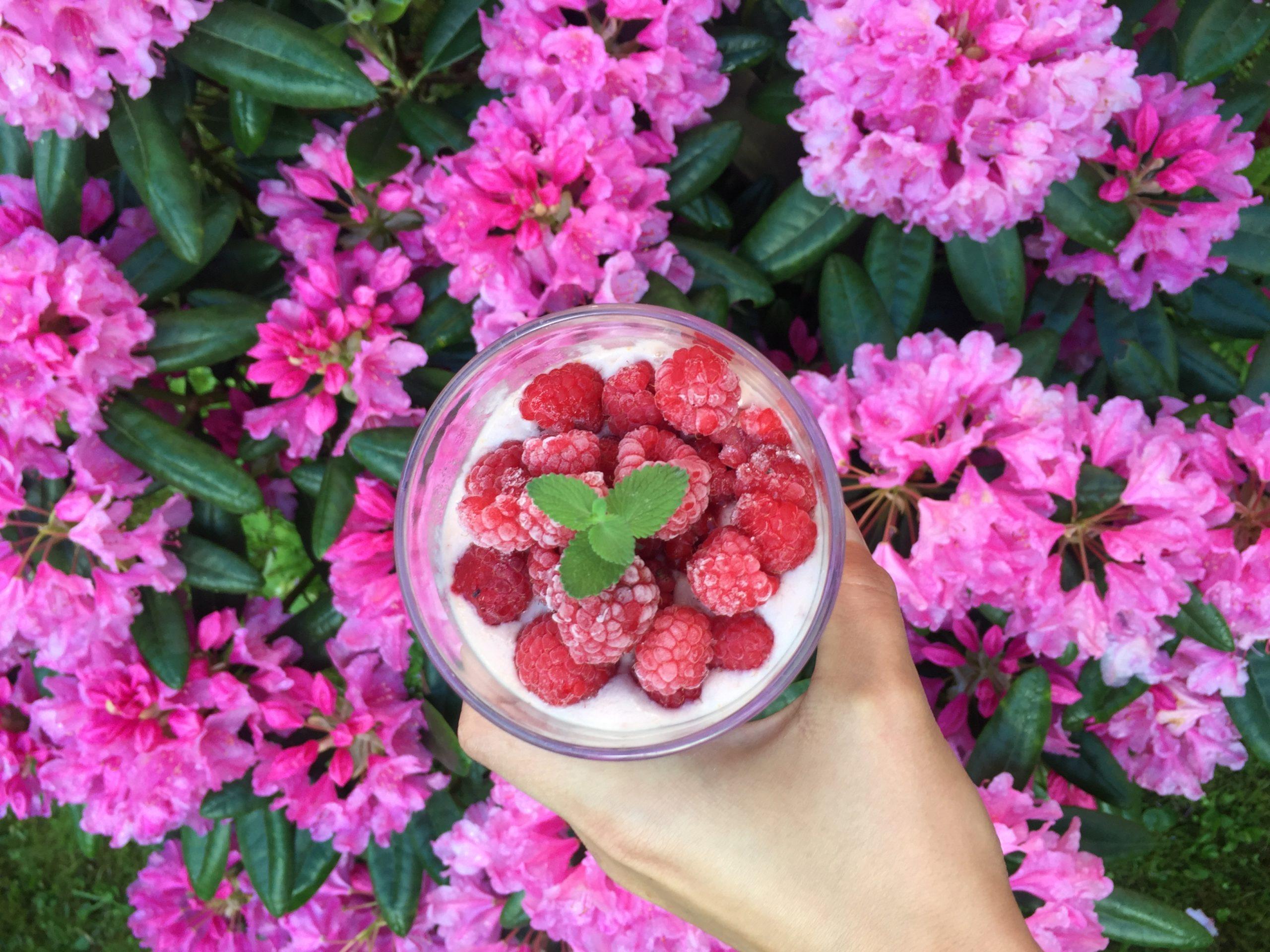 Elluyellow smoothiekuva ja kukat