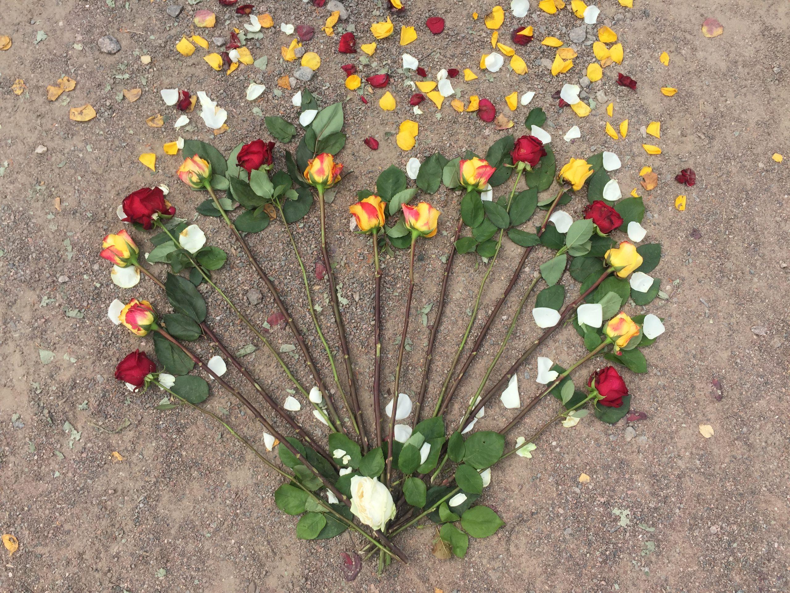 Elluyellow ruusut sydämen muodossa