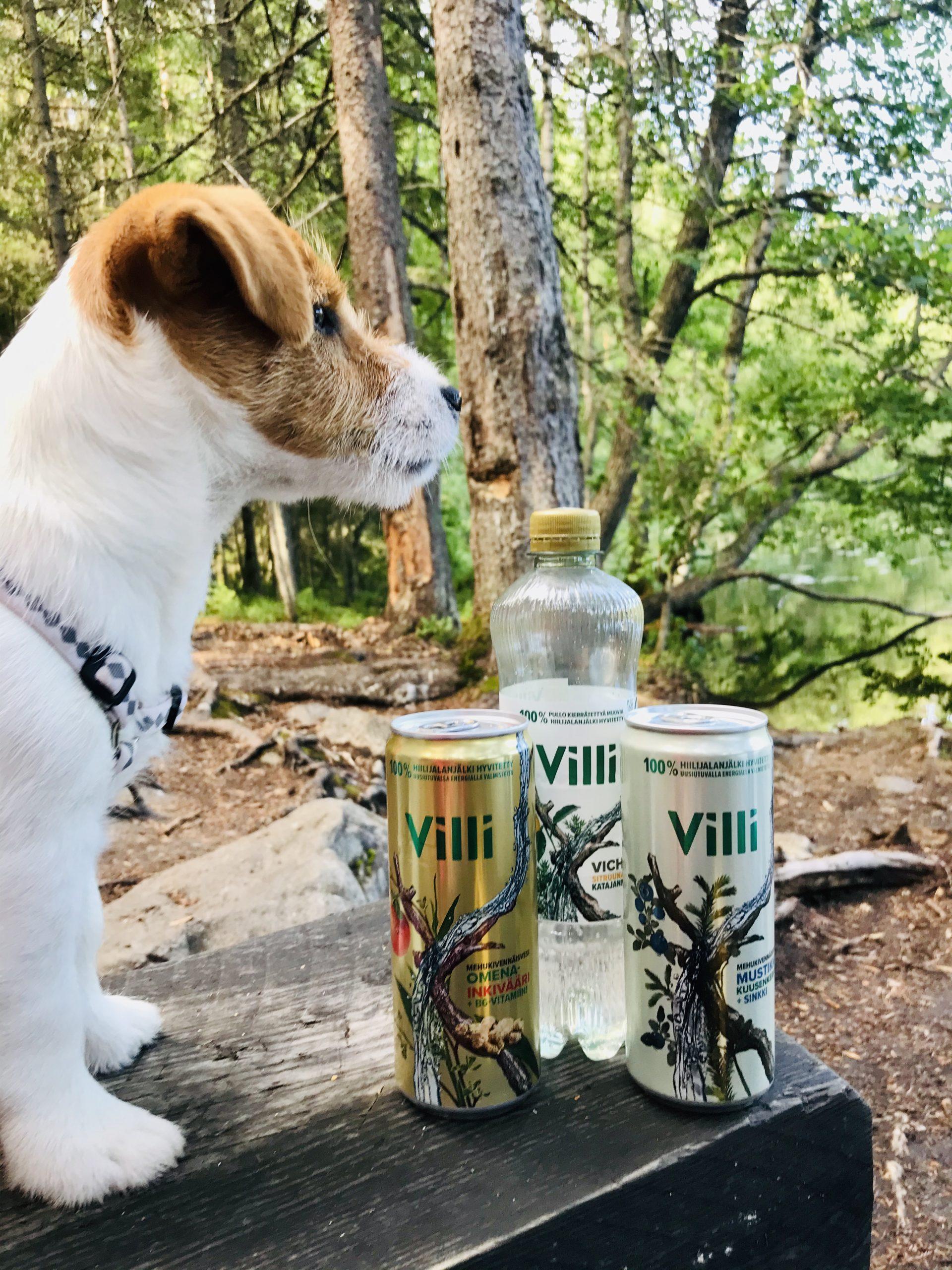 Elluyellow testaamassa ekologisia Villivesiä